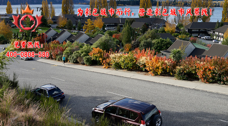 为彩色城市而行,营造彩色风景线!